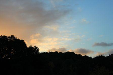 paysage_m